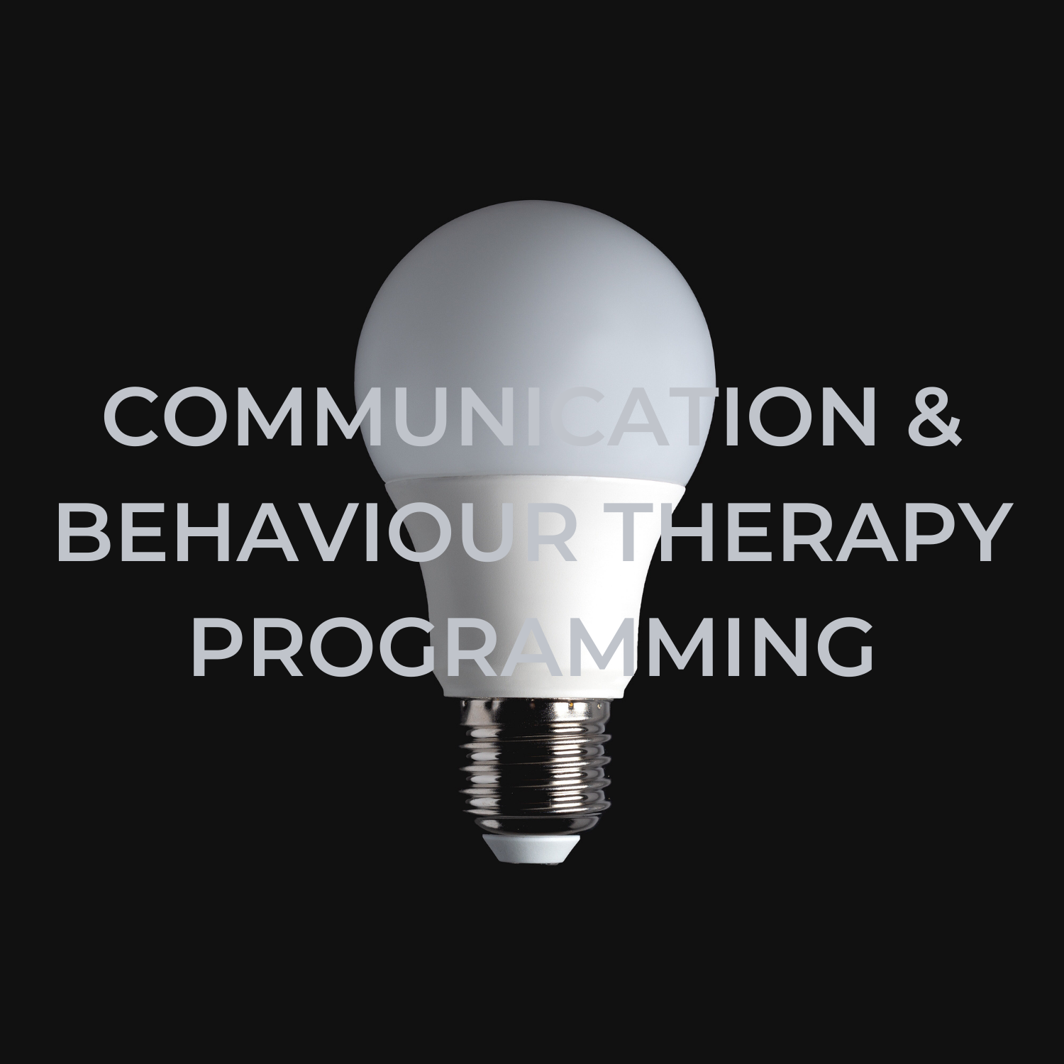 Communication and Behaviour Therapy Programming