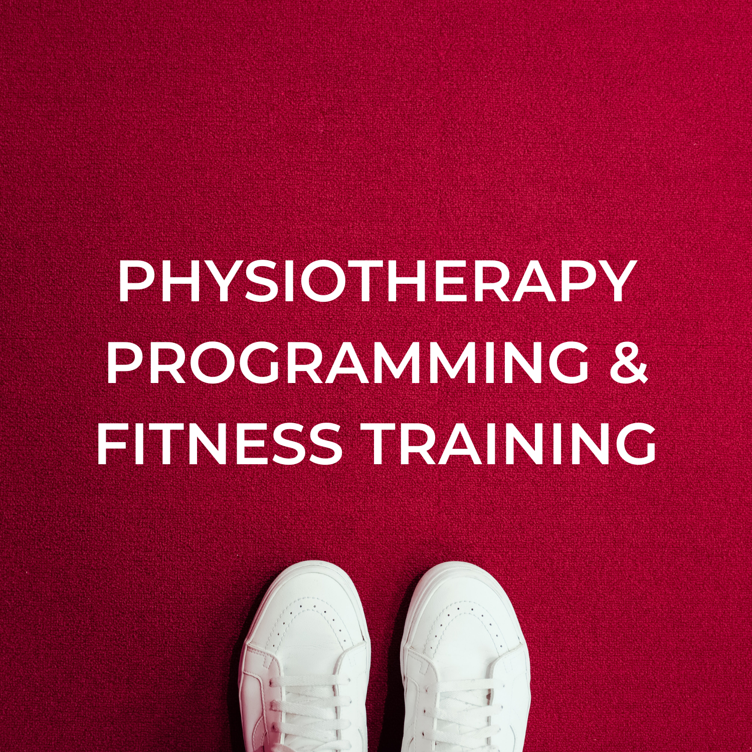 Physiotherapy Programming and Fitness Training