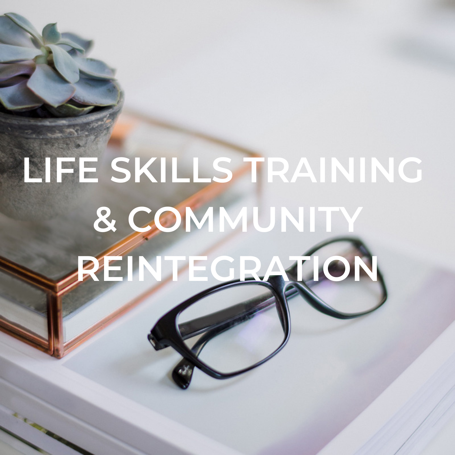 Life skills training and community reintegration